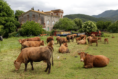 Spanish countryside on Catalonia's Costa Brava tour